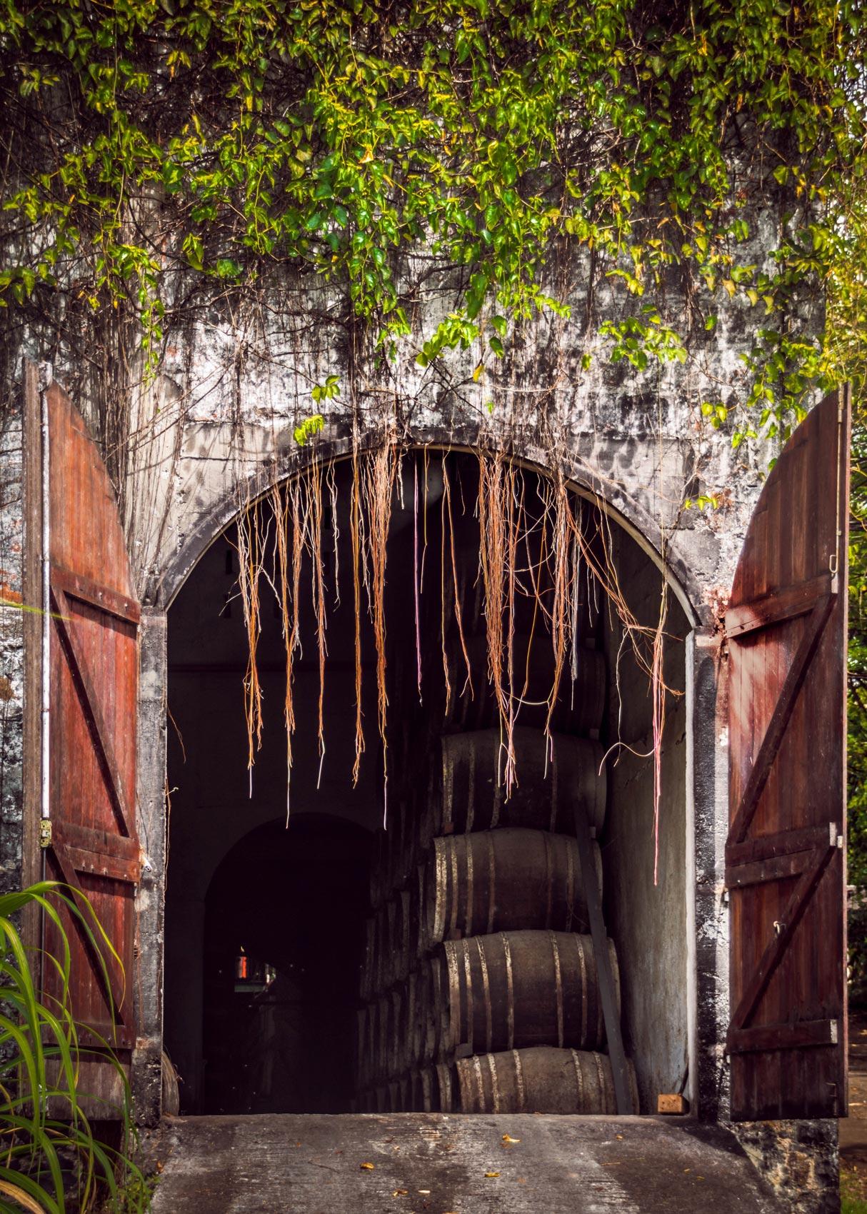 Distillerie la Favorite : les chais