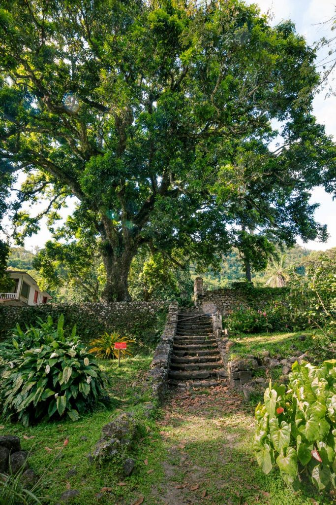Habitation Céron