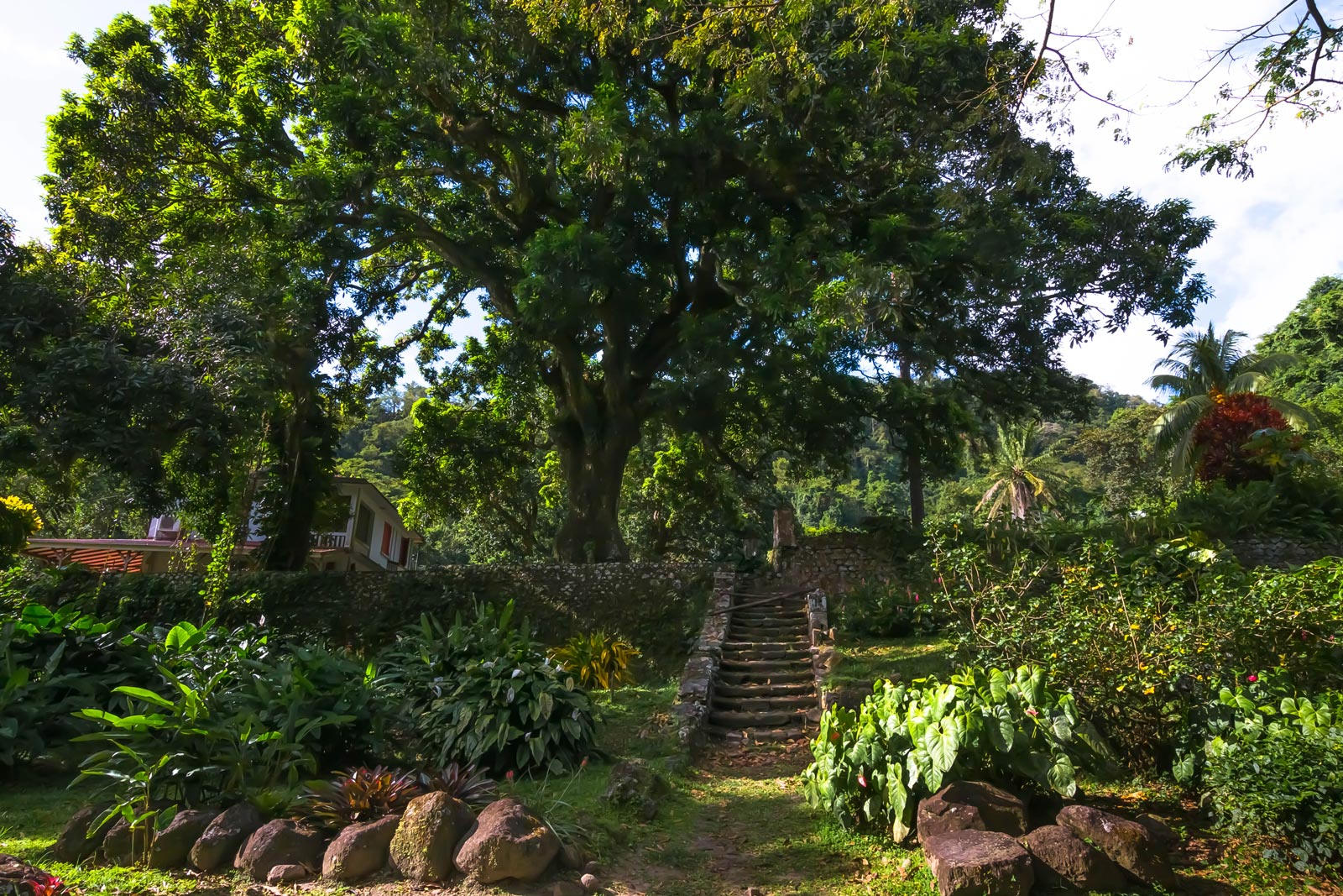 Habitation Céron : escalier