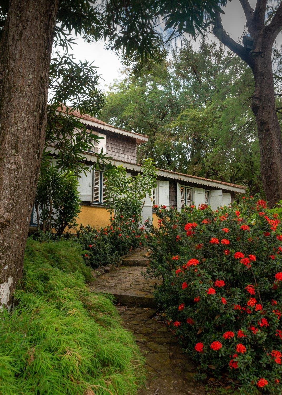 Habitation Clément : maison