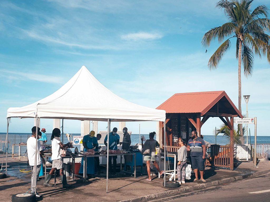 Martinique : le marché aux poissons de Bellefontaine