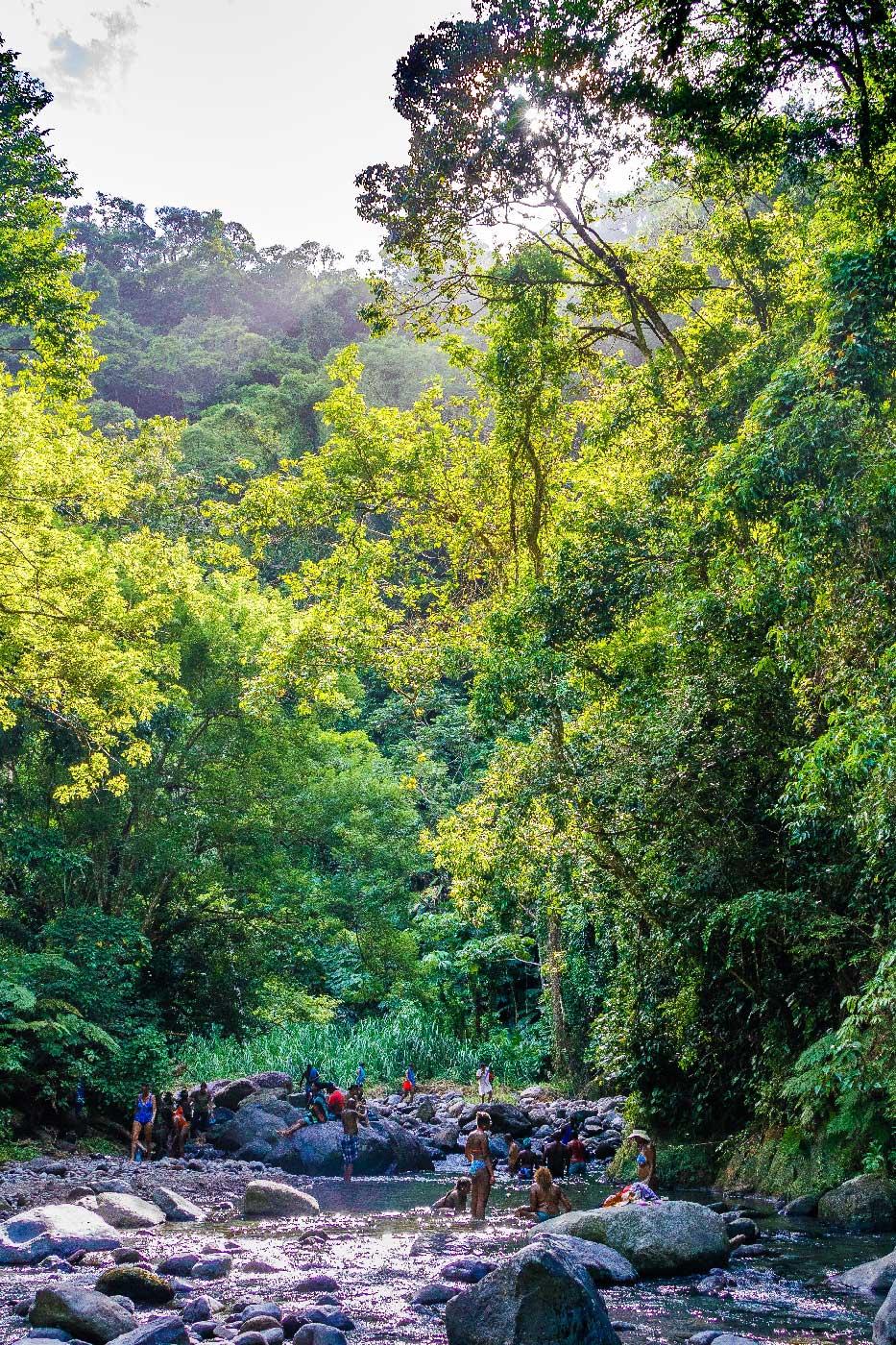 Martinique : baignade à Grand-Rivière