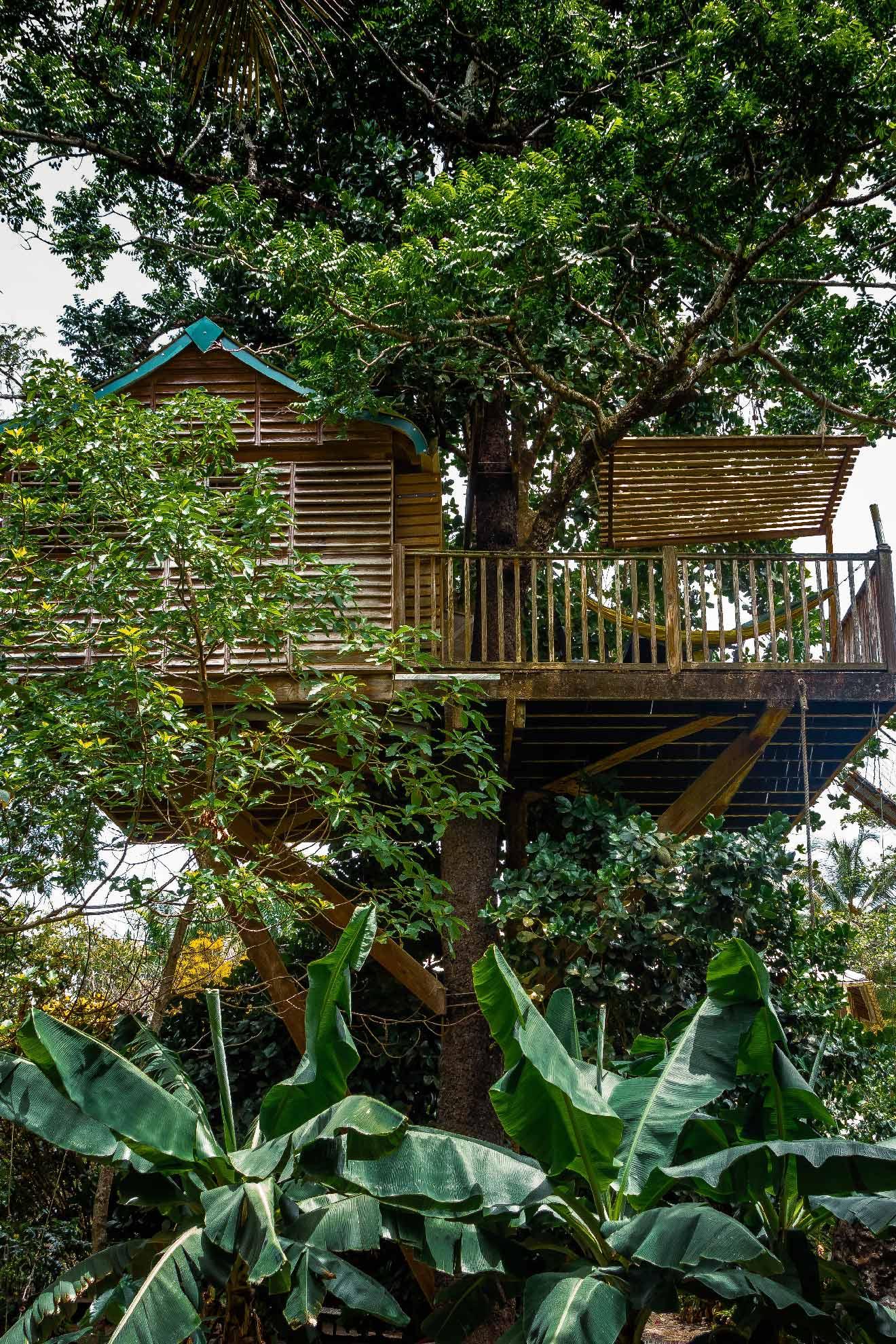 Domaine de Robinson - cabane dans les arbres