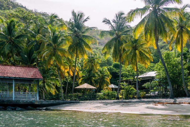 La plage de l'Anse Noire en Martinique