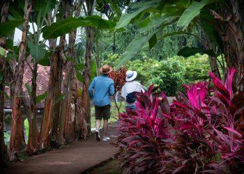 Martinique : jeune couple au Musée de la Banane